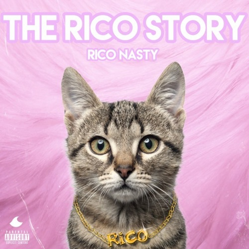 The Rico Story (2016)